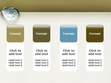Pearls and Shell PowerPoint Template Slide 5
