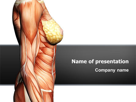Medical: Female Anatomy Muscular Corset PowerPoint Template #02872