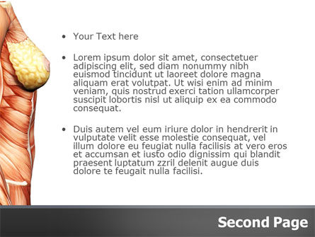 Female Anatomy Muscular Corset PowerPoint Template, Slide 2, 02872, Medical — PoweredTemplate.com