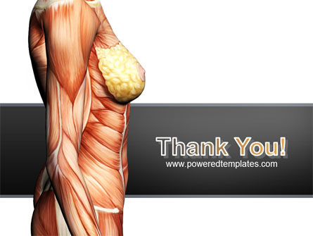 Female Anatomy Muscular Corset PowerPoint Template Slide 20