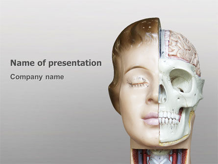 Medical: Skull As Anatomy Tutorial PowerPoint Template #02889