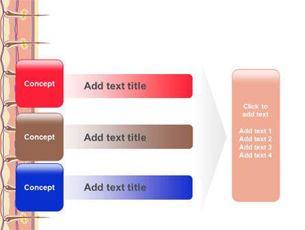Skin PowerPoint Template Slide 12