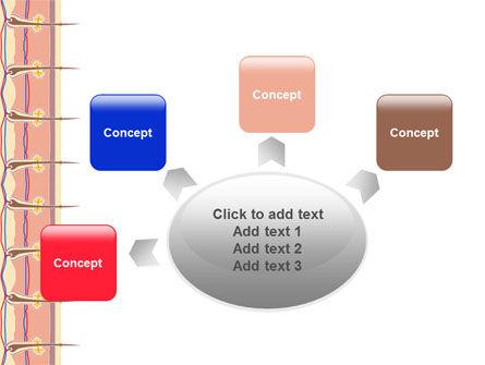 Skin PowerPoint Template Slide 7