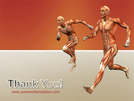 Muscular System PowerPoint Template Slide 20