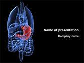 Medical: Modello PowerPoint - Stomaco #02949