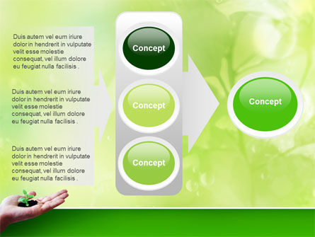 Sprout PowerPoint Template Slide 11