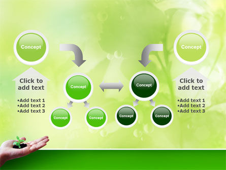 Sprout PowerPoint Template Slide 19