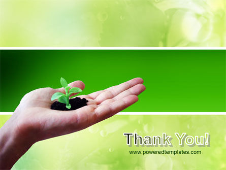 Sprout PowerPoint Template Slide 20