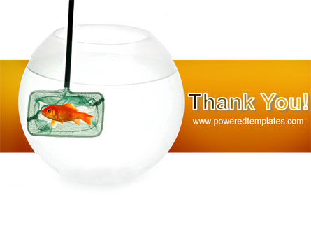 Goldfish In The Nets PowerPoint Template Slide 20