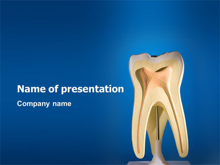 Tooth PowerPoint Template, 03023, Medical — PoweredTemplate.com