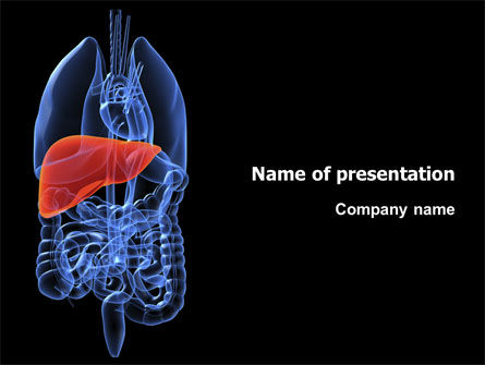 Medical: Liver PowerPoint Template #03025