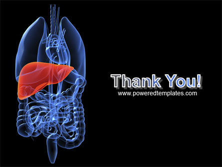 Liver PowerPoint Template Slide 20