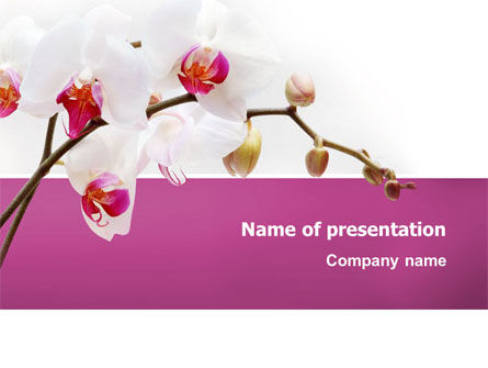 Nature & Environment: Bouquet Of Flowers PowerPoint Template #03033