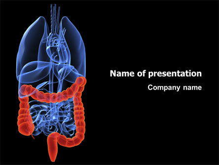 Bowels PowerPoint Template, 03065, Medical — PoweredTemplate.com