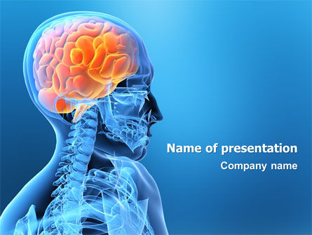 Medical: Brain In Skull PowerPoint Template #03110