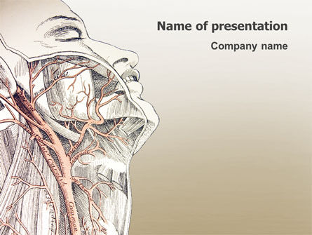 Medical: Craniofacial Anatomy PowerPoint Template #03127