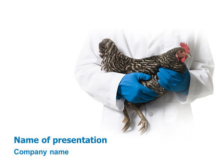 Hen PowerPoint Template, 03147, Agriculture — PoweredTemplate.com
