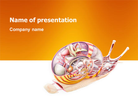 Nature & Environment: Snail PowerPoint Template #03251