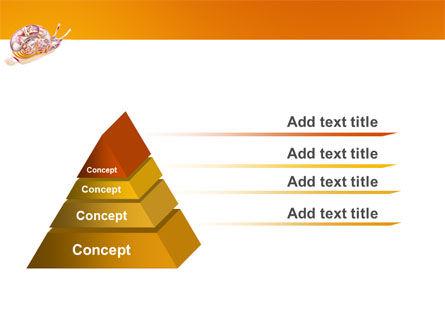 Snail PowerPoint Template, Slide 4, 03251, Nature & Environment — PoweredTemplate.com