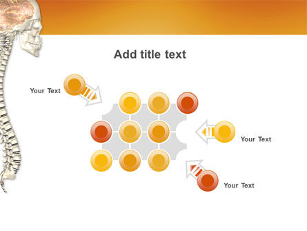 Spinal Cord PowerPoint Template Slide 10