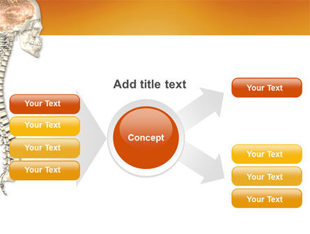 Spinal Cord PowerPoint Template Slide 15