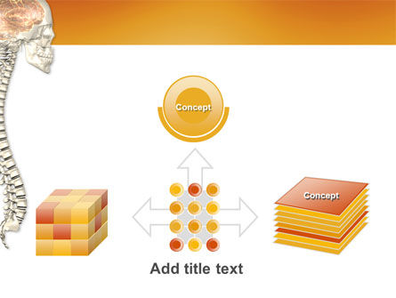 Spinal Cord PowerPoint Template Slide 19