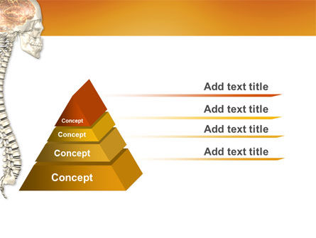Spinal Cord PowerPoint Template Slide 4