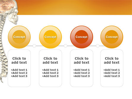 Spinal Cord PowerPoint Template Slide 5