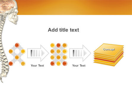 Spinal Cord PowerPoint Template Slide 9