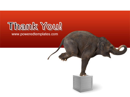 Elephant PowerPoint Template Slide 20