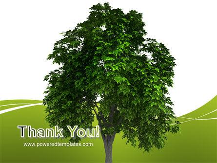 World Tree PowerPoint Template Slide 20
