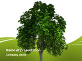Nature & Environment: World Tree PowerPoint Template #03271