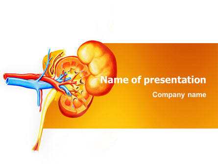 Medical: Kidneys PowerPoint Template #03275