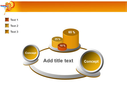 Kidneys PowerPoint Template Slide 6