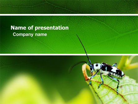 Animals and Pets: Bug's Life PowerPoint Template #03347
