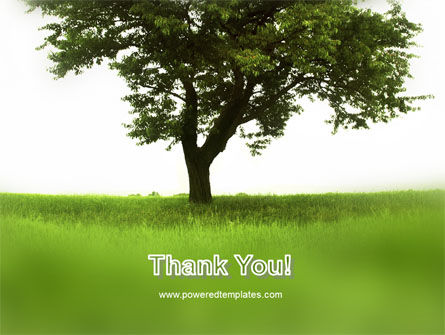Tree On A Green Meadow PowerPoint Template Slide 20