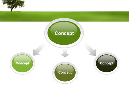 Tree On A Green Meadow PowerPoint Template, Slide 4, 03358, Nature & Environment — PoweredTemplate.com