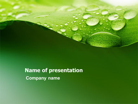 Fresh Dew On The Green Leaf PowerPoint Template, 03376, Abstract/Textures — PoweredTemplate.com