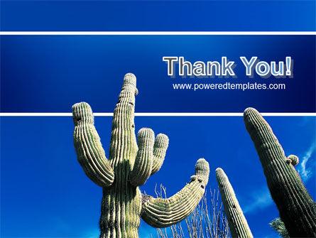 Desert Cactus PowerPoint Template Slide 20