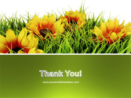 Yellow Flower PowerPoint Template Slide 20