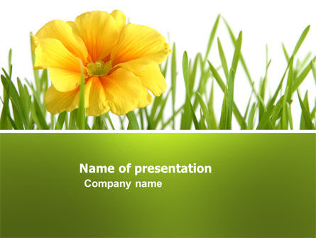Yellow Flower In A Green Grass PowerPoint Template, 03427, Nature & Environment — PoweredTemplate.com