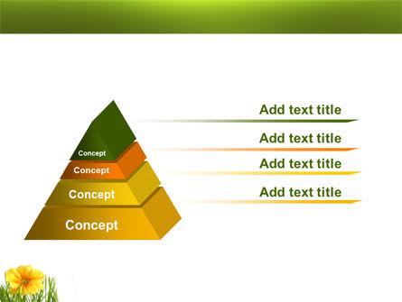 Yellow Flower In A Green Grass PowerPoint Template Slide 12