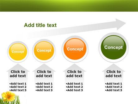 Yellow Flower In A Green Grass PowerPoint Template Slide 13