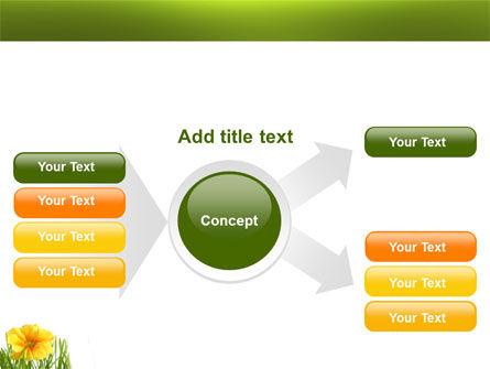 Yellow Flower In A Green Grass PowerPoint Template Slide 14