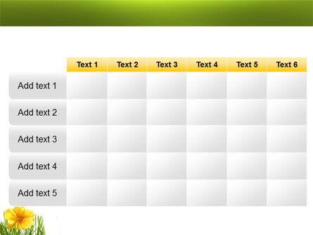 Yellow Flower In A Green Grass PowerPoint Template Slide 15