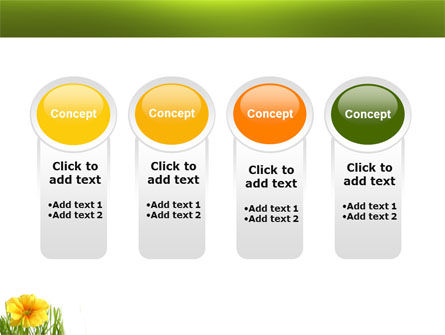 Yellow Flower In A Green Grass PowerPoint Template Slide 5