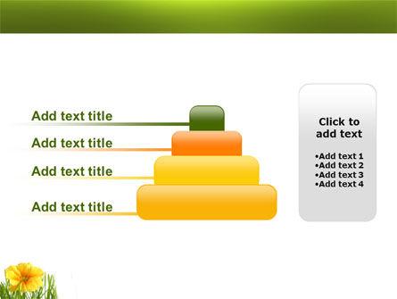 Yellow Flower In A Green Grass PowerPoint Template Slide 8