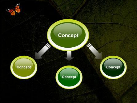 Butterfly Effect PowerPoint Template, Slide 4, 03432, Animals and Pets — PoweredTemplate.com