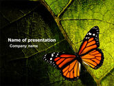 Animals and Pets: Butterfly Effect PowerPoint Template #03432