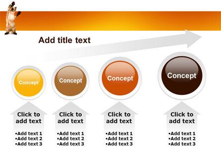 Kitten PowerPoint Template Slide 13